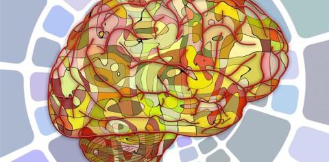 Growing Mini-Brains in Labs to Better Understand Neurological Disease